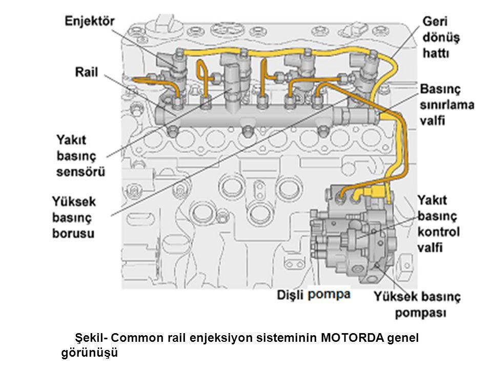 Şekil- Common rail enjeksiyon sisteminin MOTORDA genel görünüşü