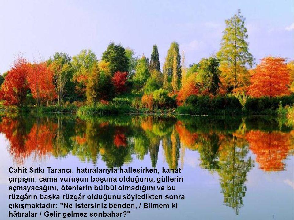 Yahya Kemal'in hazan bahçesi şiiri tamda bunu tasvir ediyor: Kalbim yine üzgün, seni andım da derinden Geçtim yine dün eski hazan bahçelerinden Yorgun
