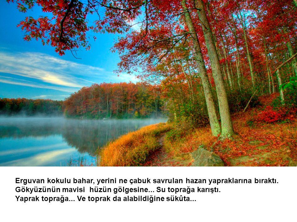 Bir haykırış var eylül de; düşünebilene, okuyabilene… Dile gelir Eylül; der ki: Ben geldim öteler ötesinden, heybesinde dolu haberlerle...