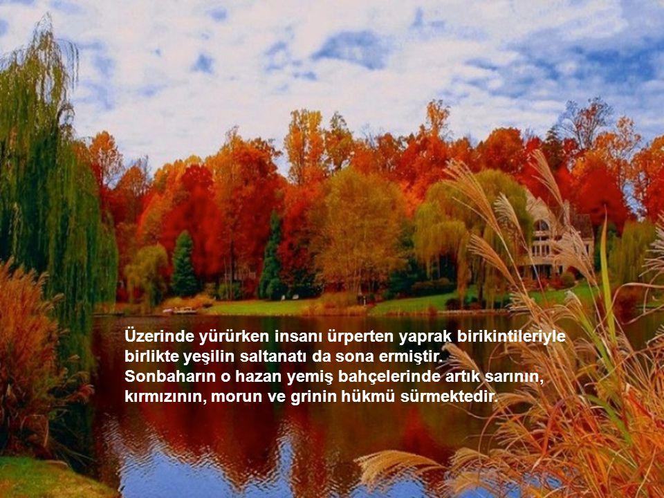 Devran döner, çıkagelir sonbahar bir hüzünlü beste eşliğinde. Ayva sarı, nar kırmızıdır bahçelerde. Dalları, titrek bir sancı kuşatmıştır. Sarı yaprak