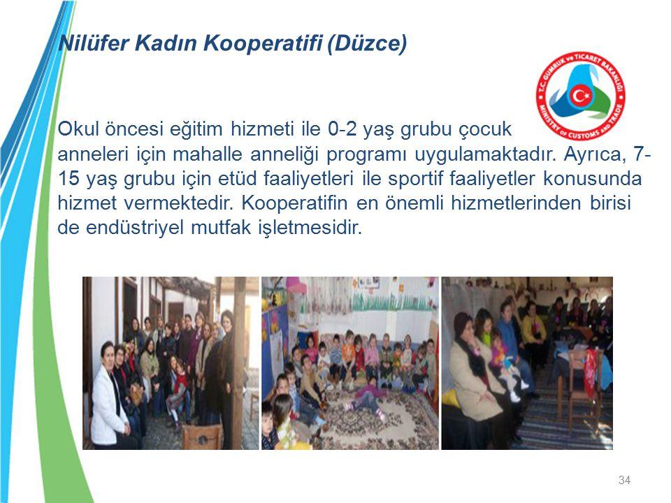 Nilüfer Kadın Kooperatifi (Düzce) Okul öncesi eğitim hizmeti ile 0-2 yaş grubu çocuk anneleri için mahalle anneliği programı uygulamaktadır. Ayrıca, 7