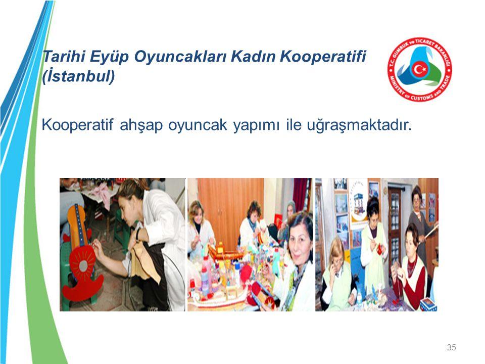 Tarihi Eyüp Oyuncakları Kadın Kooperatifi (İstanbul) Kooperatif ahşap oyuncak yapımı ile uğraşmaktadır. 35