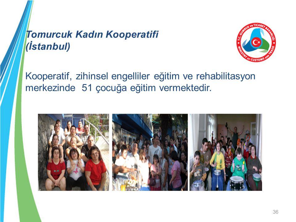 Tomurcuk Kadın Kooperatifi (İstanbul) Kooperatif, zihinsel engelliler eğitim ve rehabilitasyon merkezinde 51 çocuğa eğitim vermektedir. 36