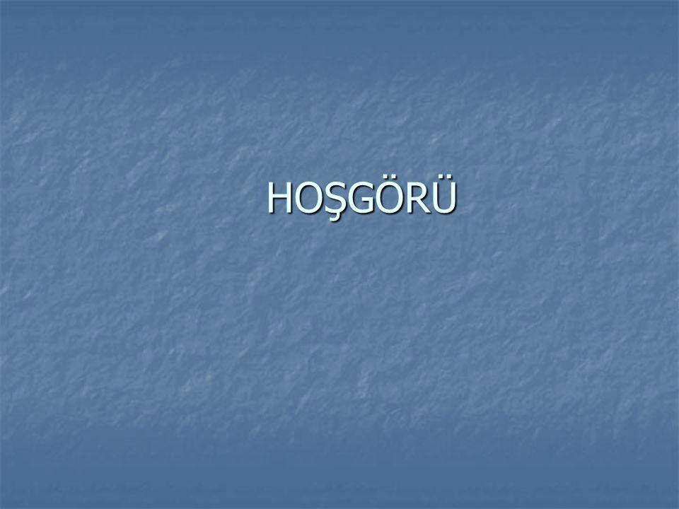 HOŞGÖRÜ