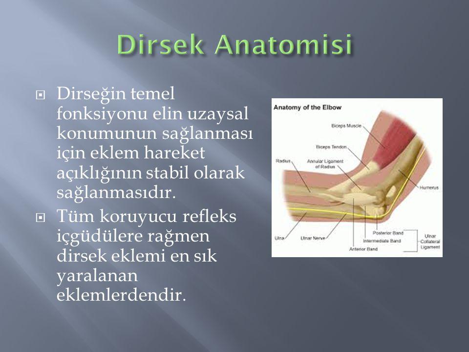  Dirseğin temel fonksiyonu elin uzaysal konumunun sağlanması için eklem hareket açıklığının stabil olarak sağlanmasıdır.