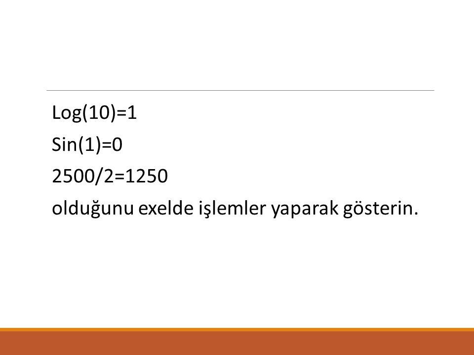 Log(10)=1 Sin(1)=0 2500/2=1250 olduğunu exelde işlemler yaparak gösterin.