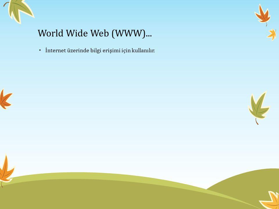 World Wide Web (WWW)... İnternet üzerinde bilgi erişimi için kullanılır.