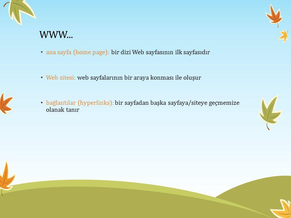 WWW... ana sayfa (home page): bir dizi Web sayfasının ilk sayfasıdır Web sitesi: web sayfalarının bir araya konması ile oluşur bağlantılar (hyperlinks
