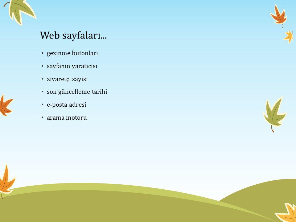 Web sayfaları... gezinme butonları sayfanın yaratıcısı ziyaretçi sayısı son güncelleme tarihi e-posta adresi arama motoru