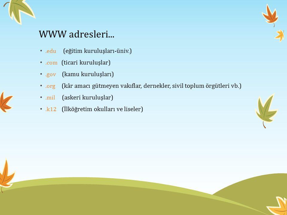 WWW adresleri....edu (eğitim kuruluşları-üniv.).com (ticari kuruluşlar).gov (kamu kuruluşları).org (kâr amacı gütmeyen vakıflar, dernekler, sivil topl