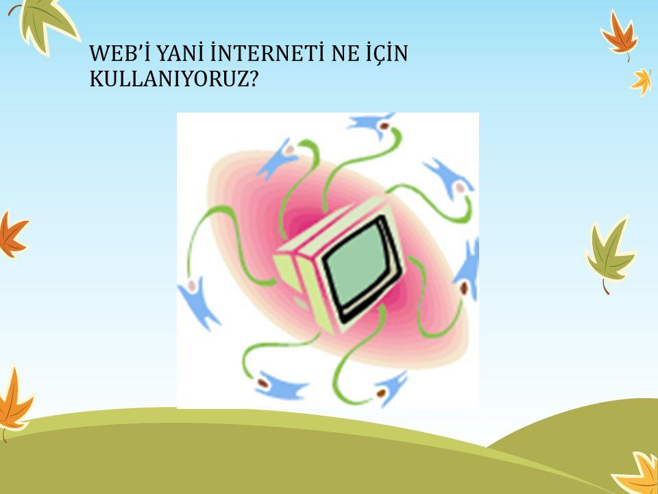 WEB'İ YANİ İNTERNETİ NE İÇİN KULLANIYORUZ?