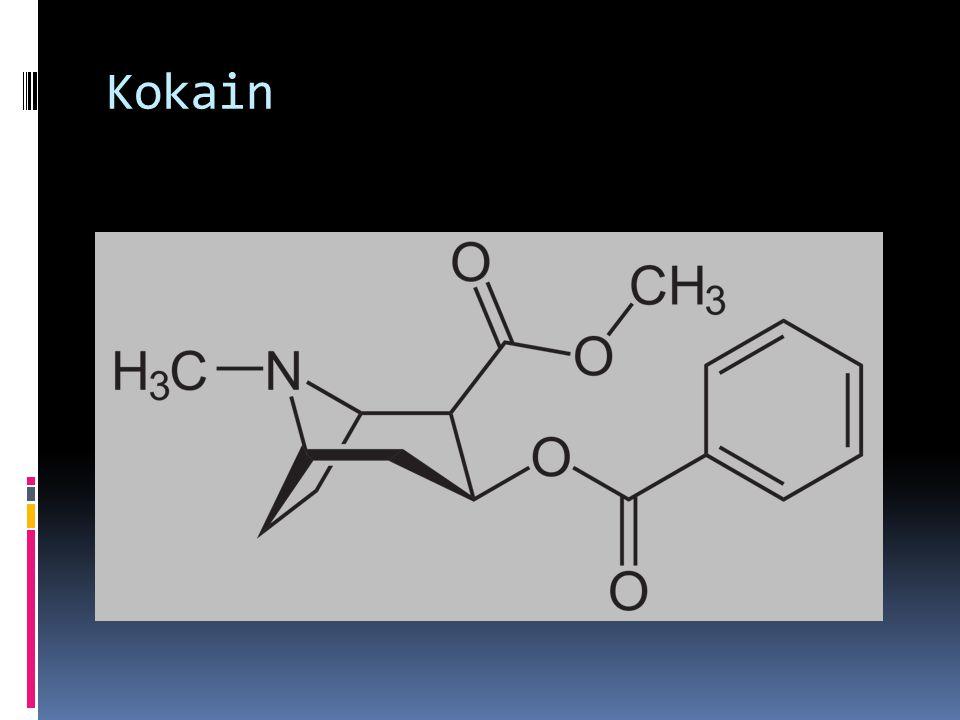  Koka ağacının (Erythroxylum coca) yapraklarında bulunan bir alkaloiddir.