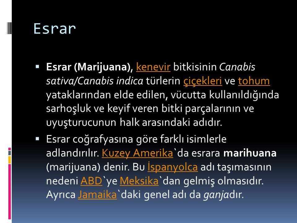 Esrar  Esrar (Marijuana), kenevir bitkisinin Canabis sativa/Canabis indica türlerin çiçekleri ve tohum yataklarından elde edilen, vücutta kullanıldığ