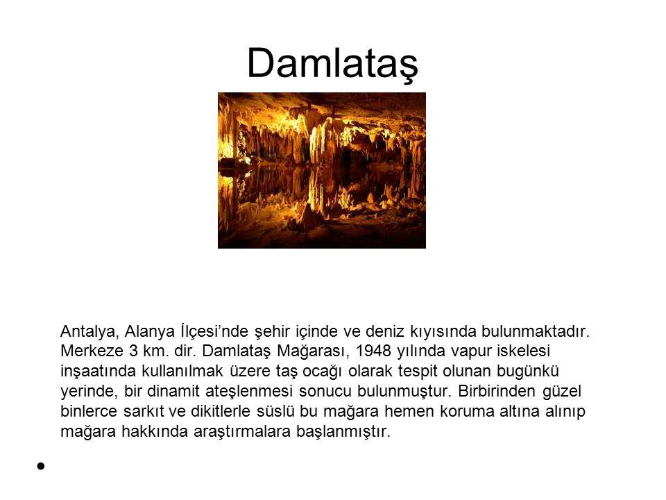 Nilüfer çayı Nilüfer İlçesine adını veren ve Bursanın en önemli akarsuyu olan 103 km uzunluğundaki Nilüfer çayı, Uludağın güney yamaçlarında 850 metre yükseklikteki 2 mağaradan çıkar.