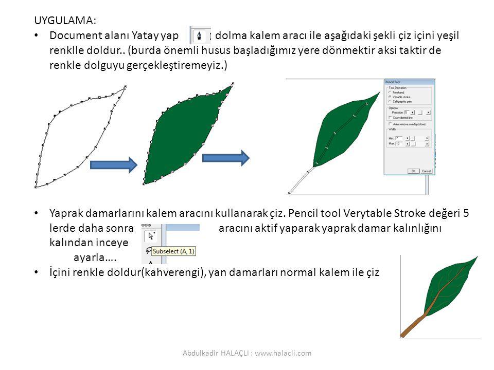 UYGULAMA: Document alanı Yatay yap dolma kalem aracı ile aşağıdaki şekli çiz içini yeşil renklle doldur.. (burda önemli husus başladığımız yere dönmek