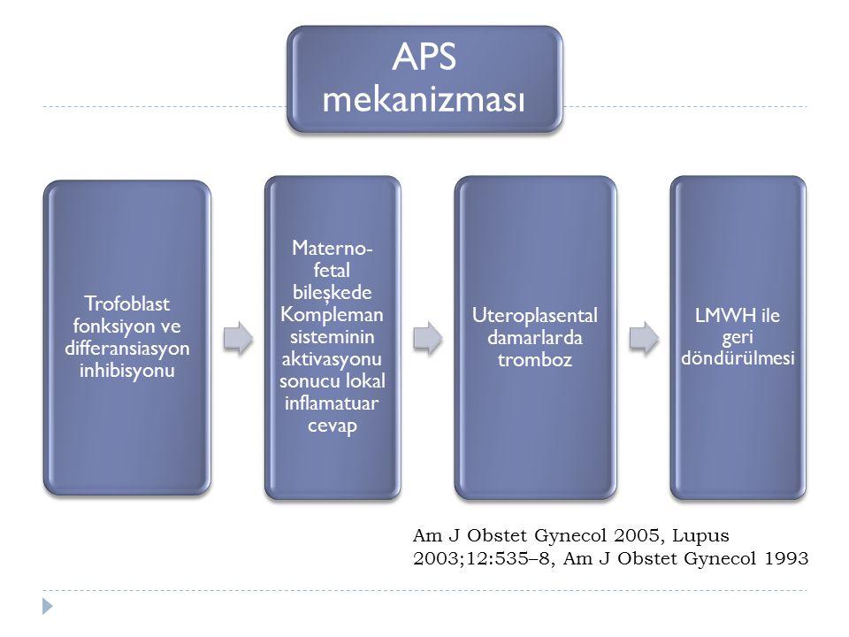 APS mekanizması Trofoblast fonksiyon ve differansiasyon inhibisyonu Materno- fetal bileşkede Kompleman sisteminin aktivasyonu sonucu lokal inflamatuar cevap Uteroplasental damarlarda tromboz LMWH ile geri döndürülmesi Am J Obstet Gynecol 2005, Lupus 2003;12:535–8, Am J Obstet Gynecol 1993