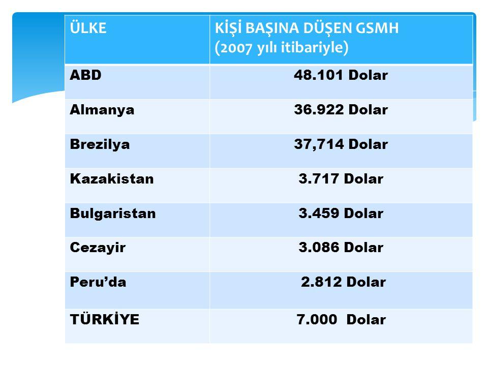 ÜLKEKİŞİ BAŞINA DÜŞEN GSMH (2007 yılı itibariyle) ABD48.101 Dolar Almanya36.922 Dolar Brezilya37,714 Dolar Kazakistan3.717 Dolar Bulgaristan3.459 Dola