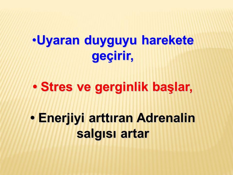 Uyaran duyguyu harekete geçirir,Uyaran duyguyu harekete geçirir, Stres ve gerginlik başlar, Stres ve gerginlik başlar, Enerjiyi arttıran Adrenalin sal