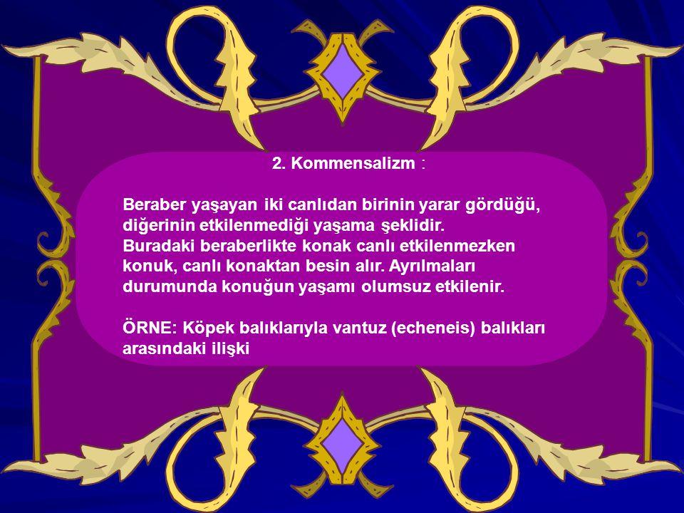 II.ÇEVRENİN CANSIZ VE CANLI ETMENLERİ 3.