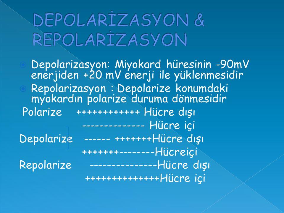  Depolarizasyon: Miyokard hüresinin -90mV enerjiden +20 mV enerji ile yüklenmesidir  Repolarizasyon : Depolarize konumdaki myokardın polarize duruma dönmesidir Polarize ++++++++++++ Hücre dışı -------------- Hücre içi Depolarize ------ +++++++Hücre dışı +++++++--------Hücreiçi Repolarize ---------------Hücre dışı ++++++++++++++Hücre içi