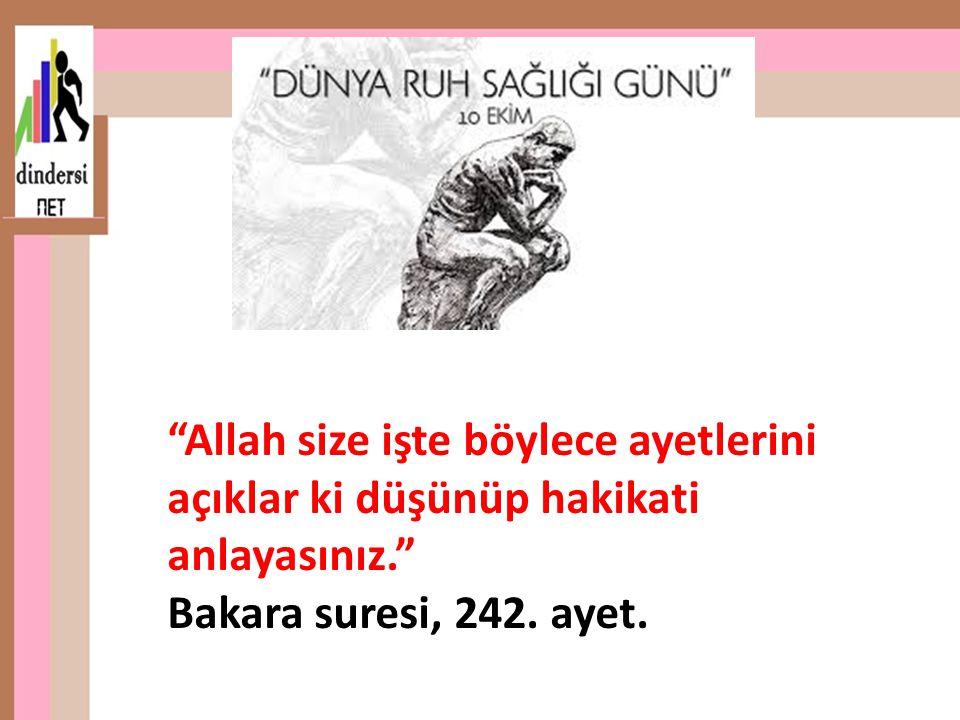 """""""Allah size işte böylece ayetlerini açıklar ki düşünüp hakikati anlayasınız."""" Bakara suresi, 242. ayet."""