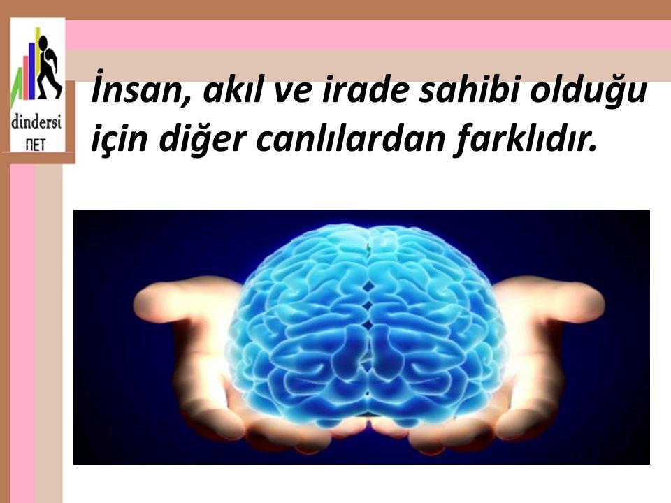 İnsan, akıl ve irade sahibi olduğu için diğer canlılardan farklıdır..