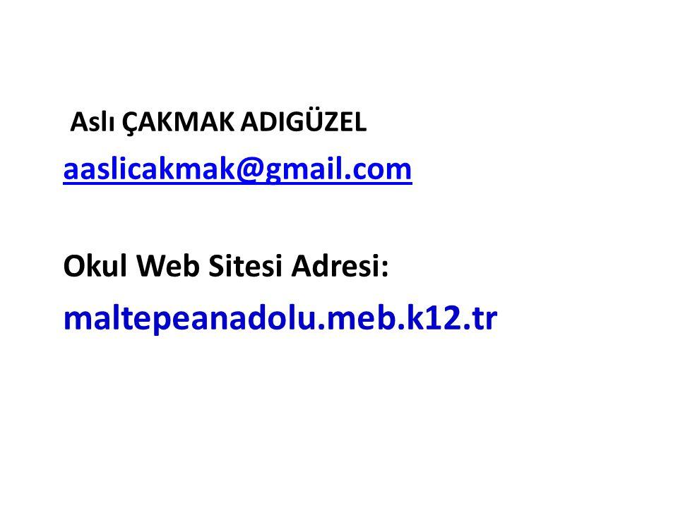 Aslı ÇAKMAK ADIGÜZEL aaslicakmak@gmail.com Okul Web Sitesi Adresi: maltepeanadolu.meb.k12.tr