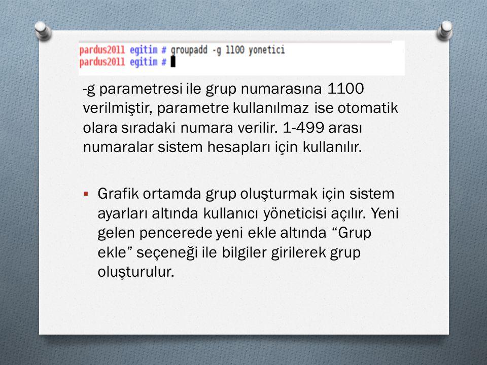 -g parametresi ile grup numarasına 1100 verilmiştir, parametre kullanılmaz ise otomatik olara sıradaki numara verilir.