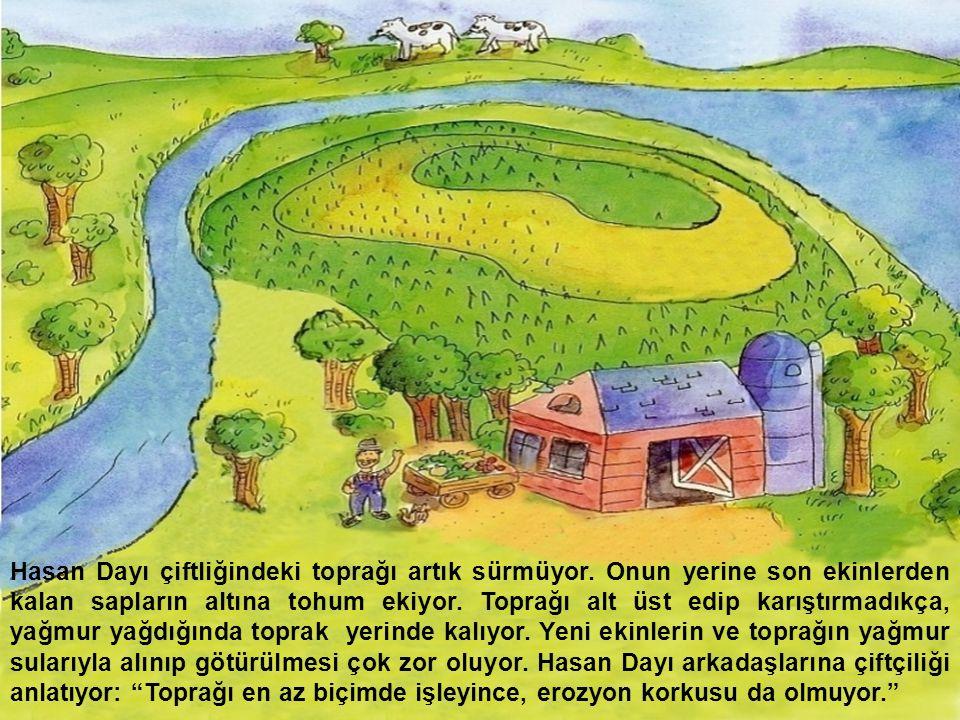 Hasan Dayı çiftliğindeki toprağı artık sürmüyor. Onun yerine son ekinlerden kalan sapların altına tohum ekiyor. Toprağı alt üst edip karıştırmadıkça,
