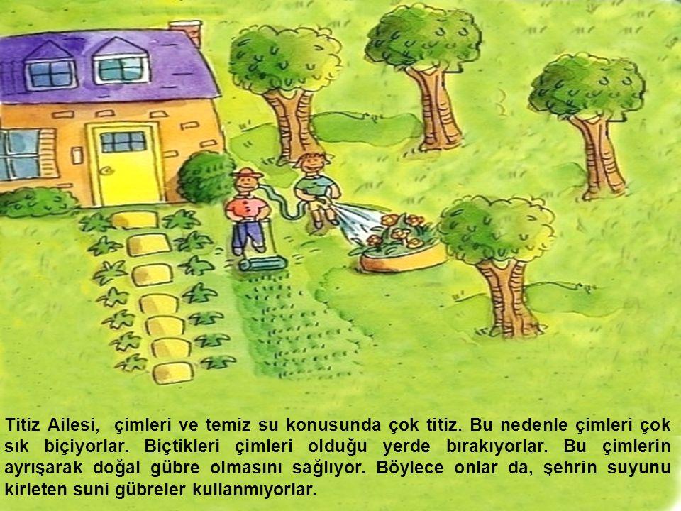 Titiz Ailesi, çimleri ve temiz su konusunda çok titiz. Bu nedenle çimleri çok sık biçiyorlar. Biçtikleri çimleri olduğu yerde bırakıyorlar. Bu çimleri
