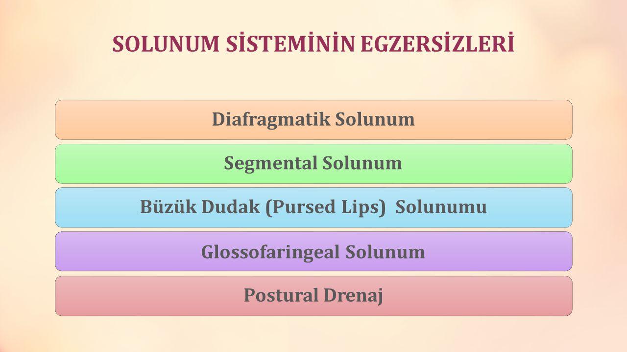 SOLUNUM SİSTEMİNİN EGZERSİZLERİ Diafragmatik SolunumSegmental SolunumBüzük Dudak (Pursed Lips) Solunumu Glossofaringeal Solunum Postural Drenaj
