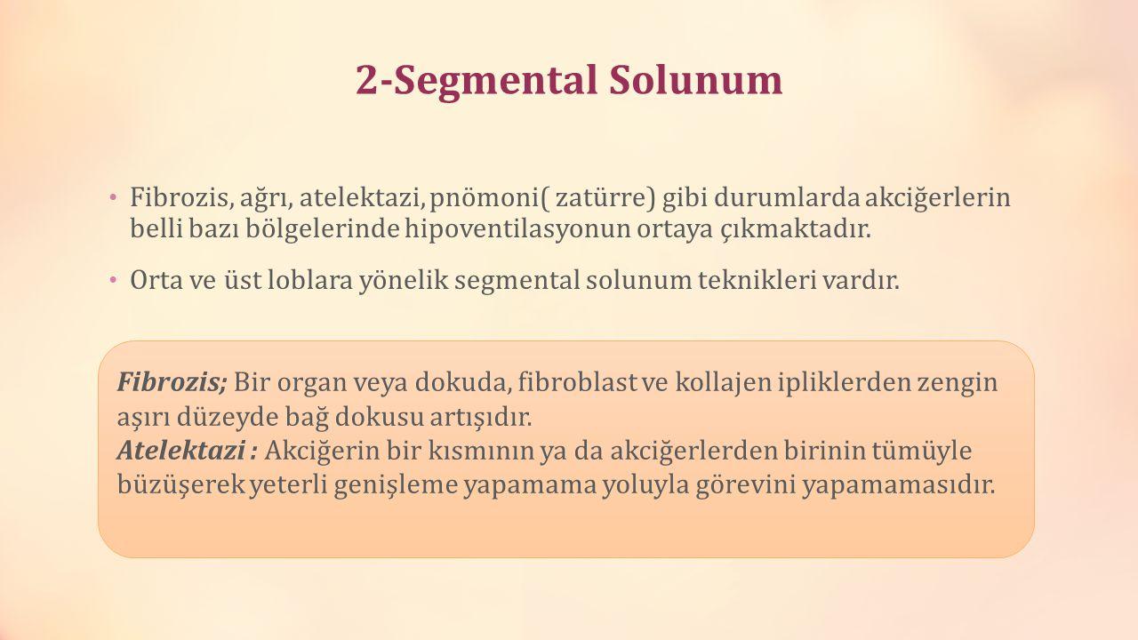 2-Segmental Solunum Fibrozis, ağrı, atelektazi, pnömoni( zatürre) gibi durumlarda akciğerlerin belli bazı bölgelerinde hipoventilasyonun ortaya çıkmak