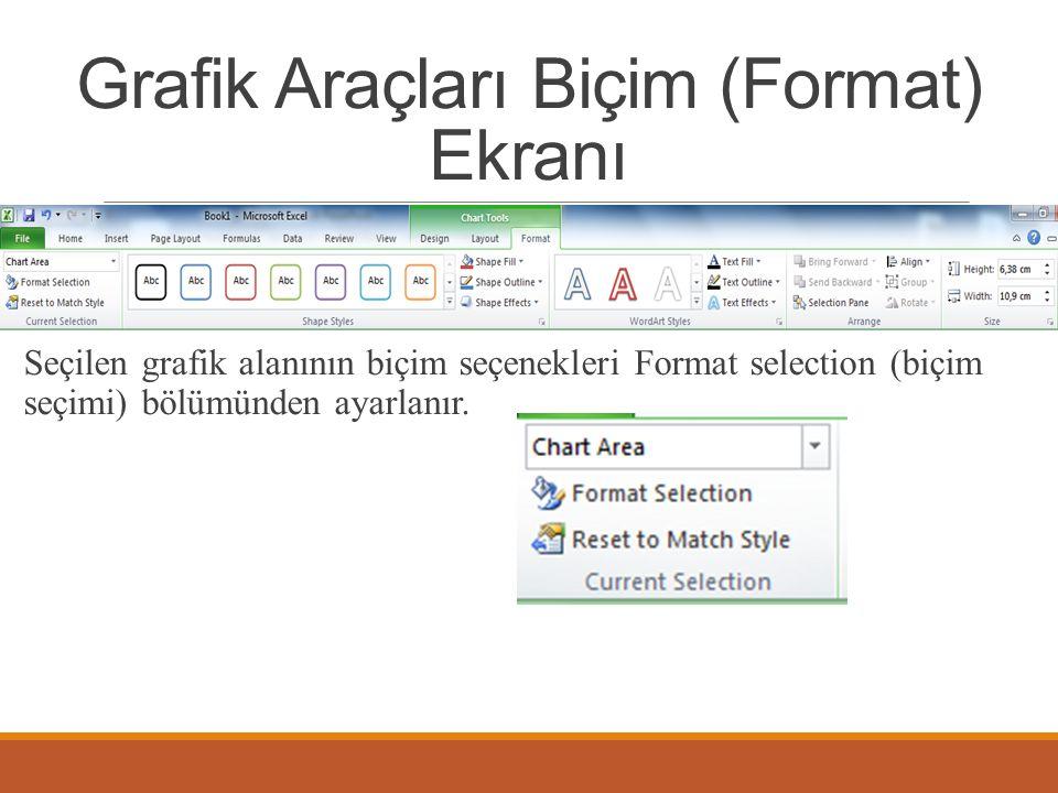 Grafik Araçları Biçim (Format) Ekranı Seçilen grafik alanının biçim seçenekleri Format selection (biçim seçimi) bölümünden ayarlanır.
