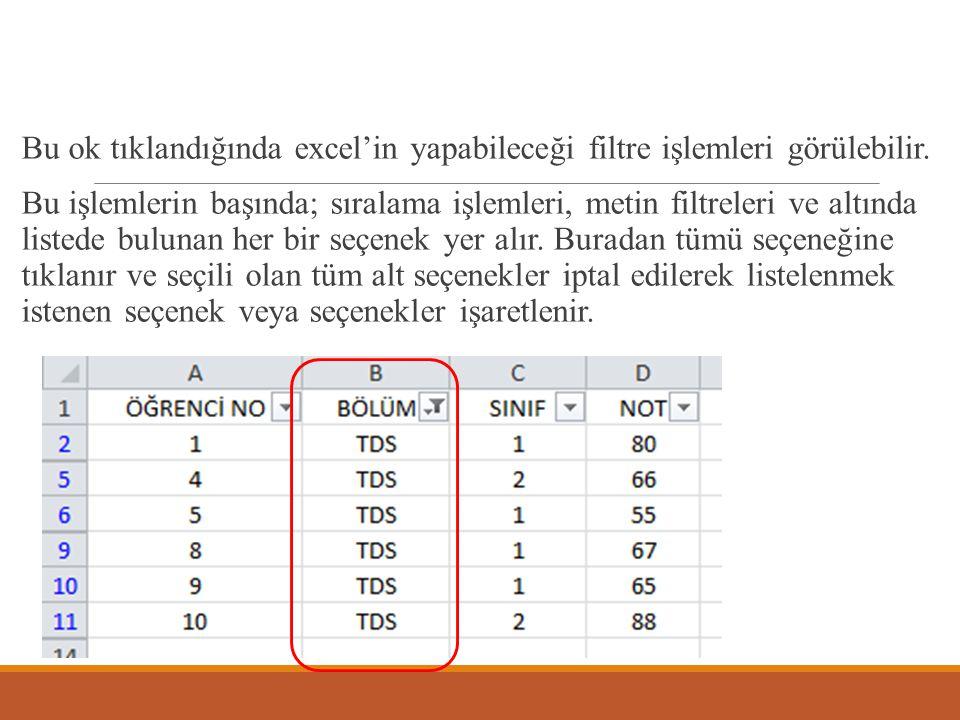 Bölüm alanı için TDS seçilirse, sadece TDS bölümünde okuyan öğrencilerin listesi görülür.
