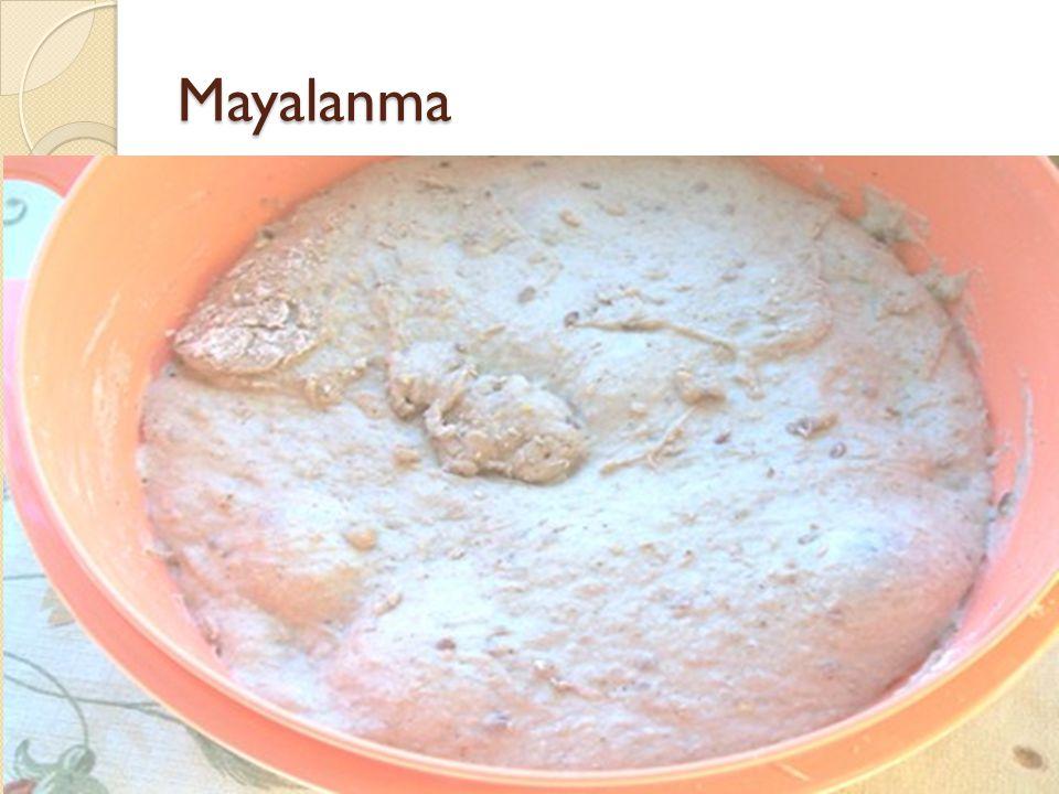 Mayalanma