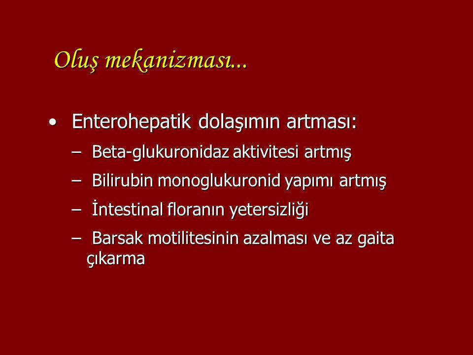 Oluş mekanizması... Enterohepatik dolaşımın artması: Enterohepatik dolaşımın artması: – Beta-glukuronidaz aktivitesi artmış – Bilirubin monoglukuronid