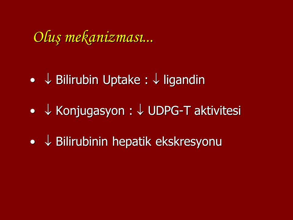 Oluş mekanizması...  Bilirubin Uptake :  ligandin  Bilirubin Uptake :  ligandin  Konjugasyon :  UDPG-T aktivitesi  Konjugasyon :  UDPG-T aktiv