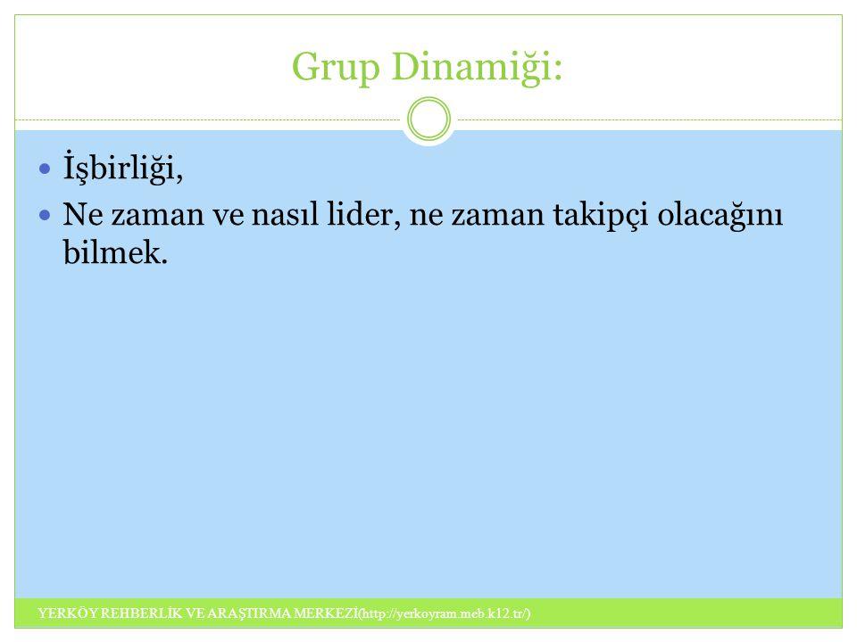 Grup Dinamiği: İşbirliği, Ne zaman ve nasıl lider, ne zaman takipçi olacağını bilmek. YERKÖY REHBERLİK VE ARAŞTIRMA MERKEZİ(http://yerkoyram.meb.k12.t