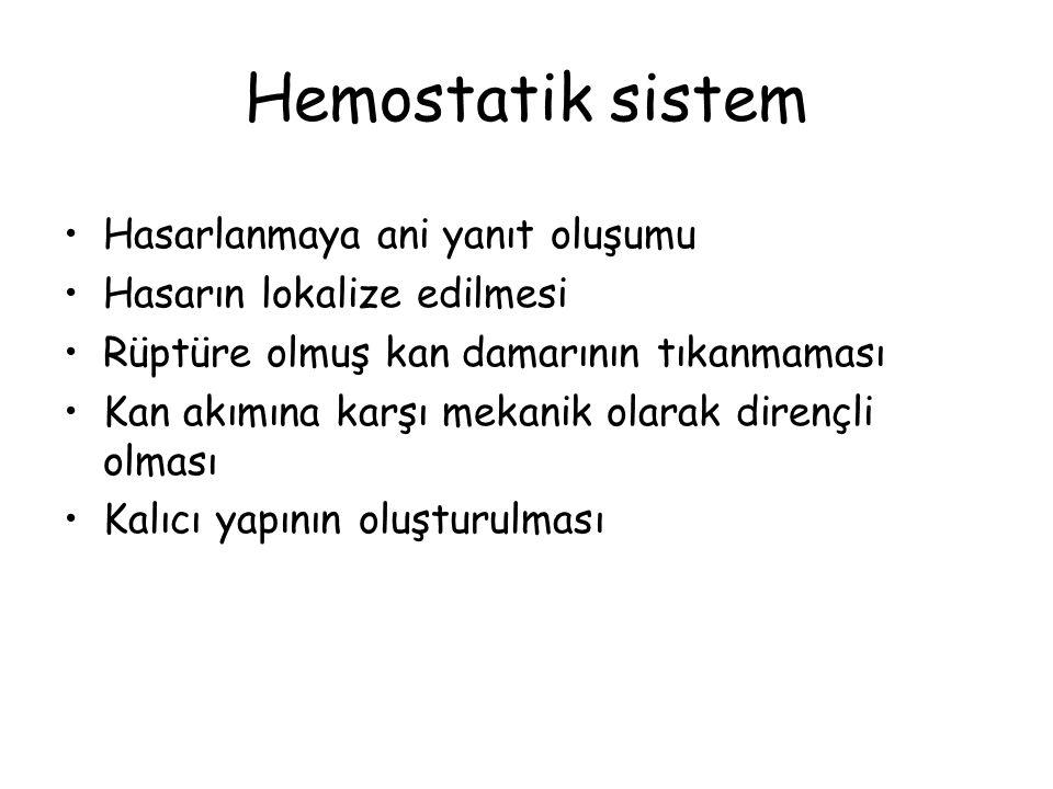 Hemostatik sistem Hasarlanmaya ani yanıt oluşumu Hasarın lokalize edilmesi Rüptüre olmuş kan damarının tıkanmaması Kan akımına karşı mekanik olarak di
