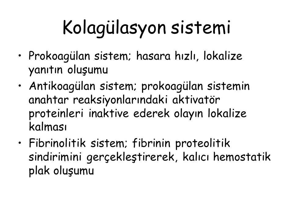Kolagülasyon sistemi Prokoagülan sistem; hasara hızlı, lokalize yanıtın oluşumu Antikoagülan sistem; prokoagülan sistemin anahtar reaksiyonlarındaki aktivatör proteinleri inaktive ederek olayın lokalize kalması Fibrinolitik sistem; fibrinin proteolitik sindirimini gerçekleştirerek, kalıcı hemostatik plak oluşumu