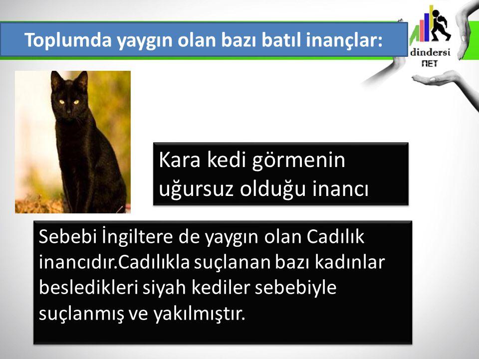 Toplumda yaygın olan bazı batıl inançlar: Kara kedi görmenin uğursuz olduğu inancı Sebebi İngiltere de yaygın olan Cadılık inancıdır.Cadılıkla suçlana