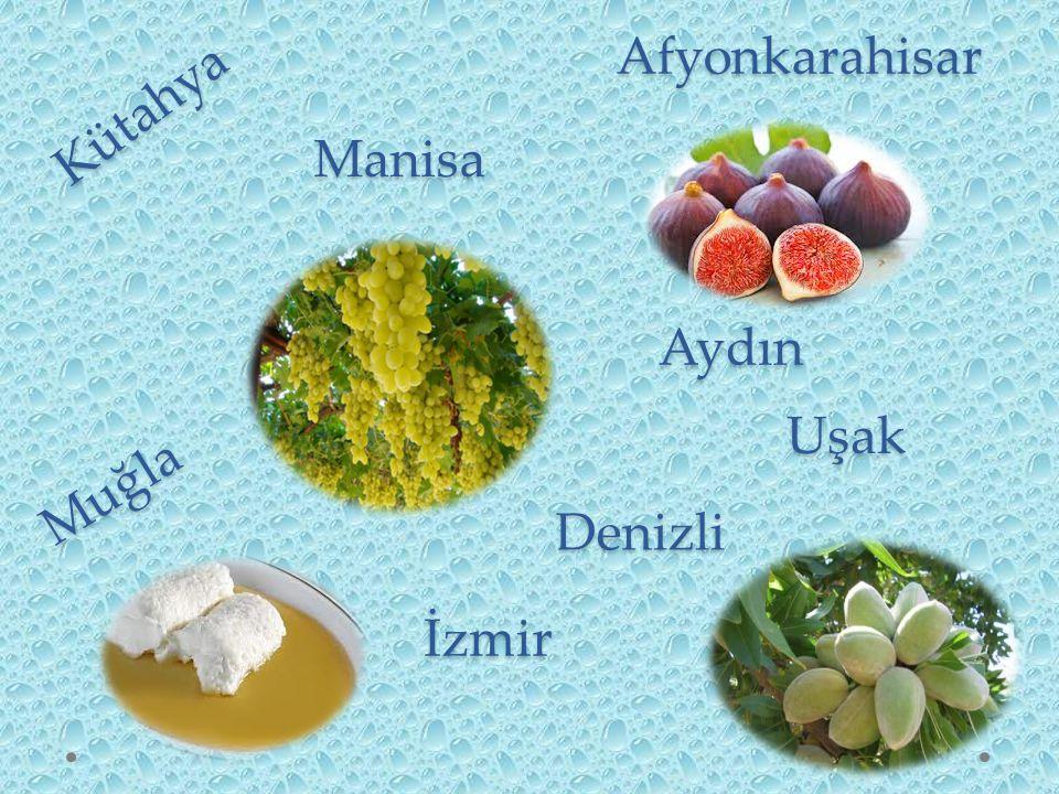 Ardahan Tunceli Malatya Elazığ Bingöl Muş Bitlis Ağrı Iğdır Van Kars Erzurum Erzincan