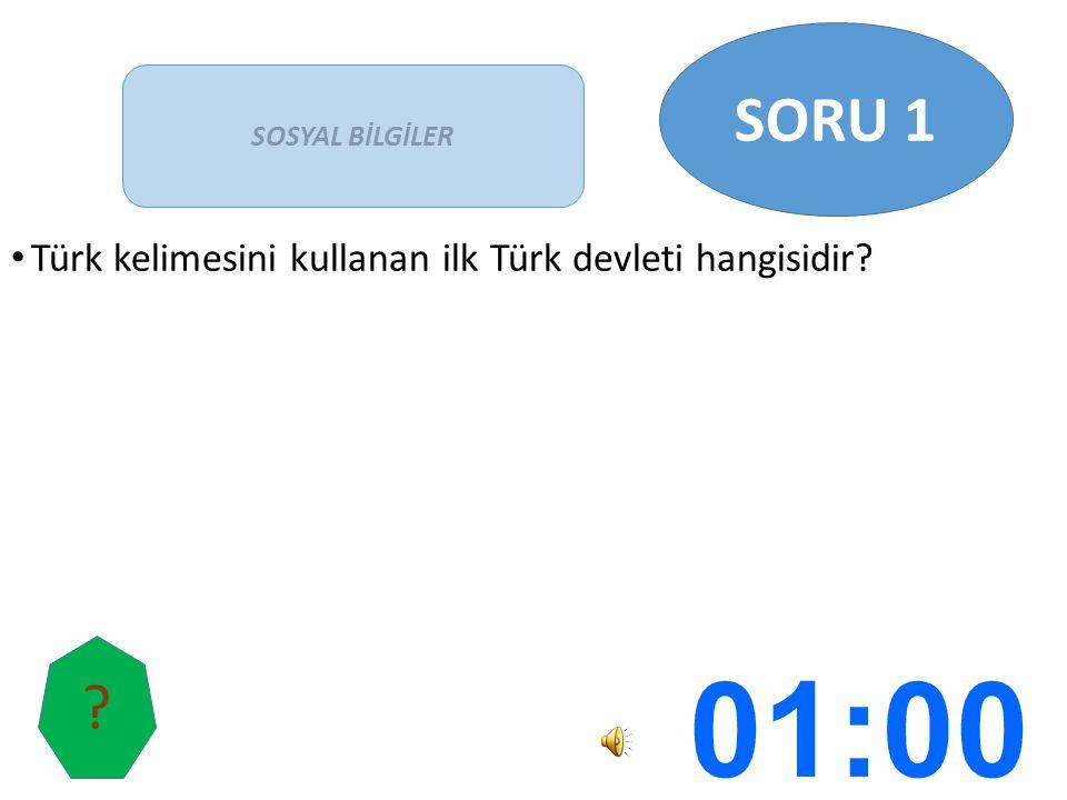 Türk kelimesini kullanan ilk Türk devleti hangisidir? SOSYAL BİLGİLER SORU 1 ?