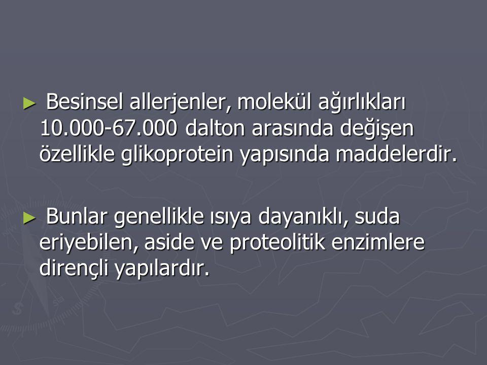 ► Besinsel allerjenler, molekül ağırlıkları 10.000-67.000 dalton arasında değişen özellikle glikoprotein yapısında maddelerdir. ► Bunlar genellikle ıs