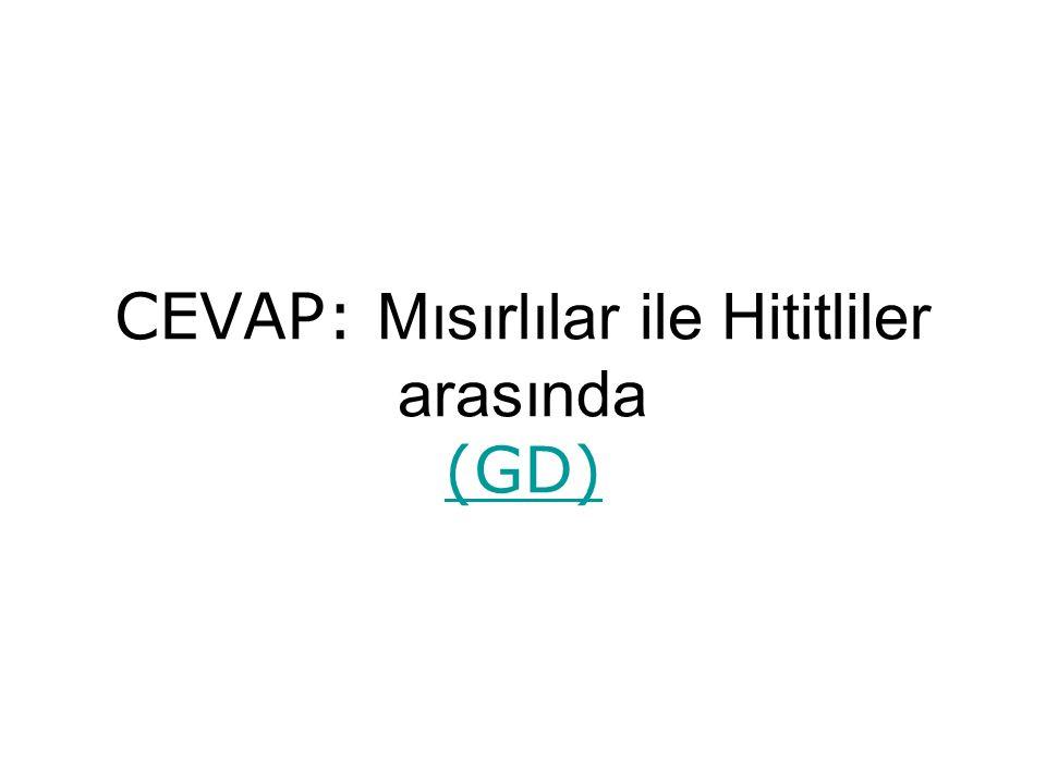 CEVAP: Mısırlılar ile Hititliler arasında (GD) (GD)