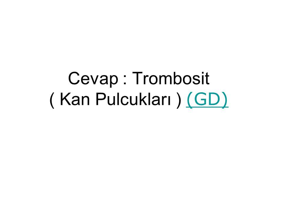 Cevap : Trombosit ( Kan Pulcukları ) (GD) (GD)