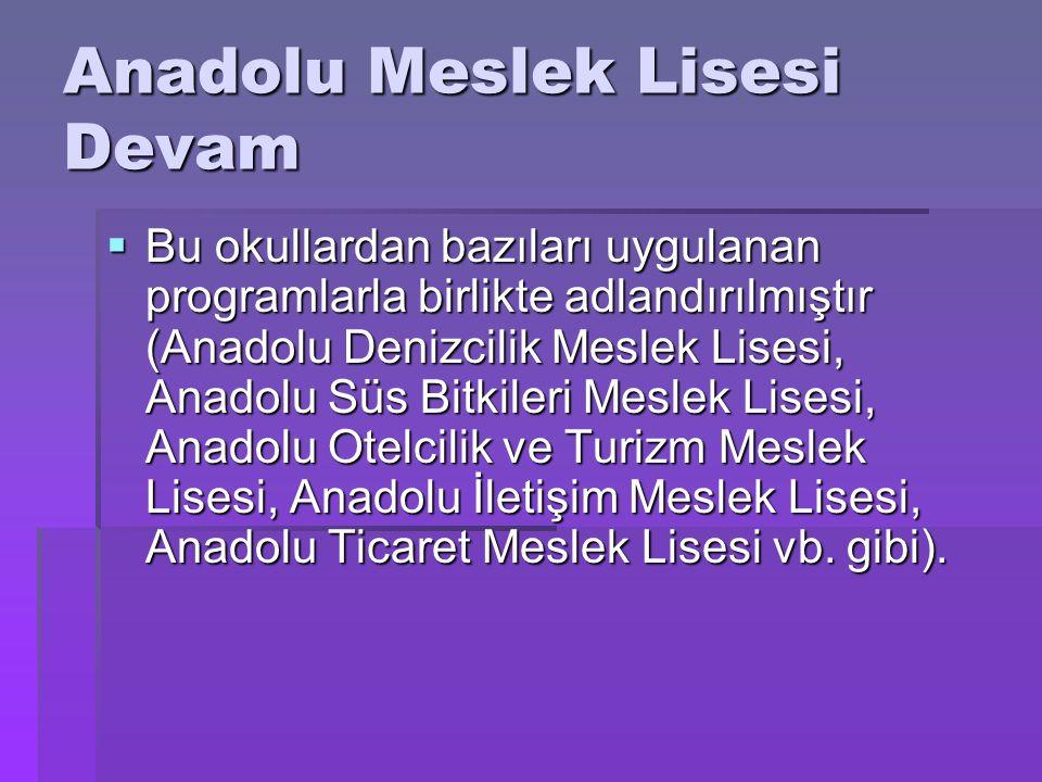 Anadolu Meslek Lisesi Devam  Bu okullardan bazıları uygulanan programlarla birlikte adlandırılmıştır (Anadolu Denizcilik Meslek Lisesi, Anadolu Süs B