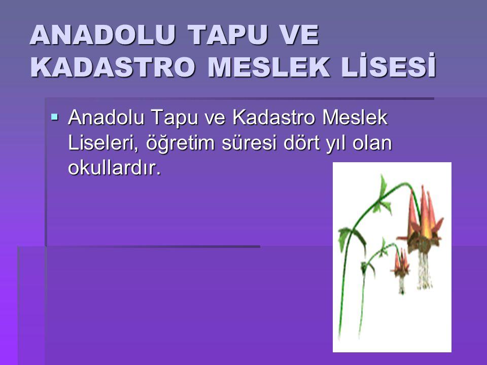 ANADOLU TAPU VE KADASTRO MESLEK LİSESİ  Anadolu Tapu ve Kadastro Meslek Liseleri, öğretim süresi dört yıl olan okullardır.