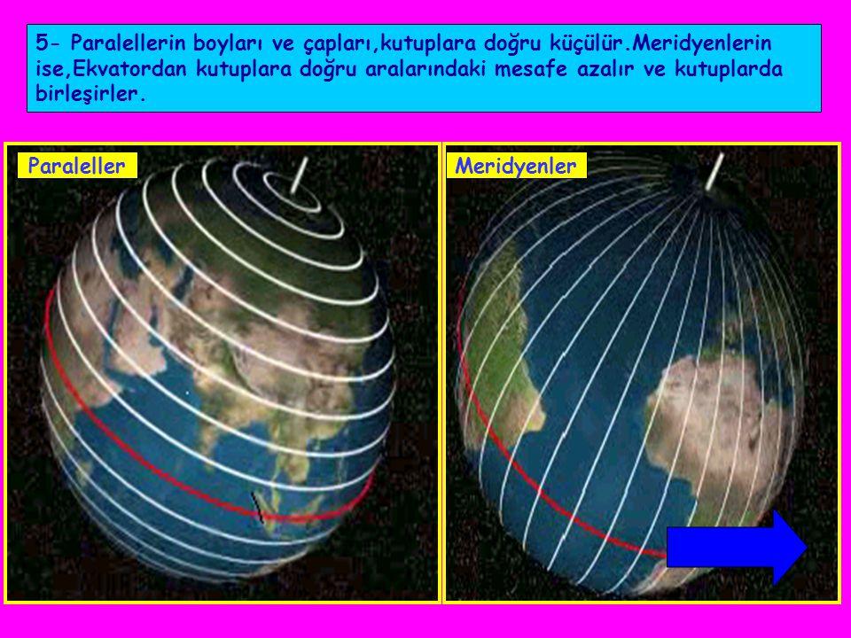 5- Paralellerin boyları ve çapları,kutuplara doğru küçülür.Meridyenlerin ise,Ekvatordan kutuplara doğru aralarındaki mesafe azalır ve kutuplarda birle