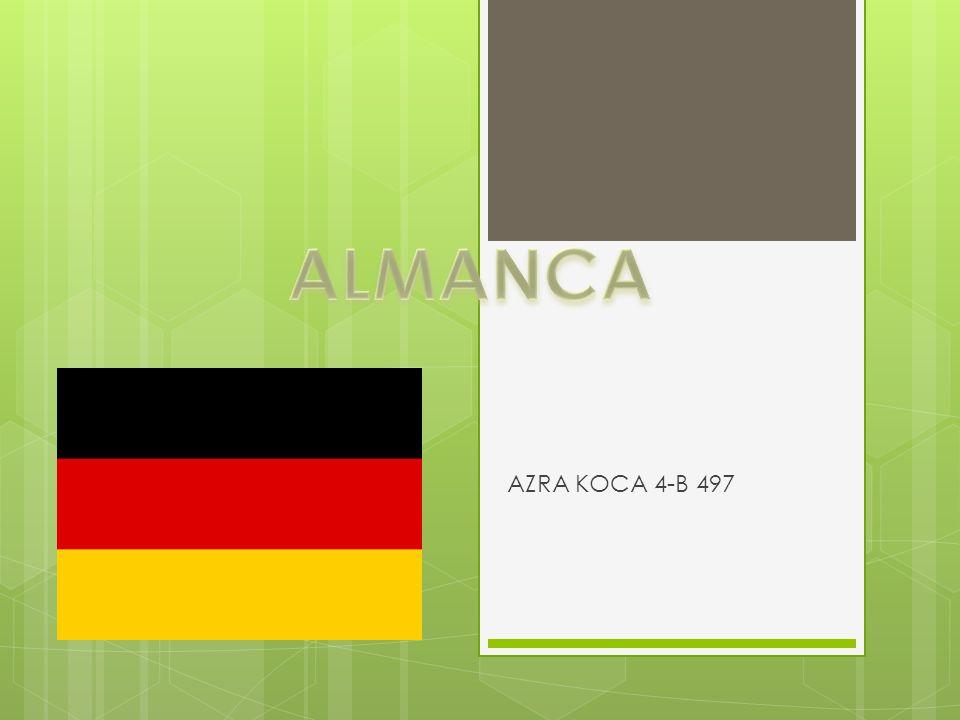 AZRA KOCA 4-B 497